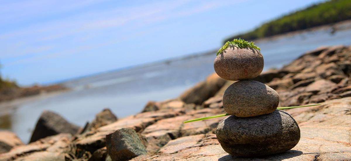 Bonhomme de roche