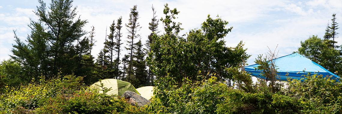 tente près du fleuve